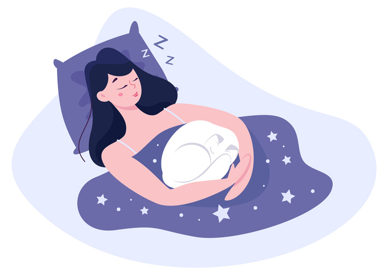 illustration of woman asleep in her bed with her white cat curled up on her - sleep